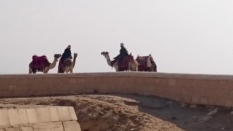 More camel riders....