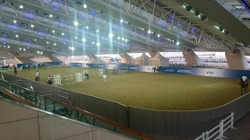 ....the warm up arena adjacent to the outdoor arena....
