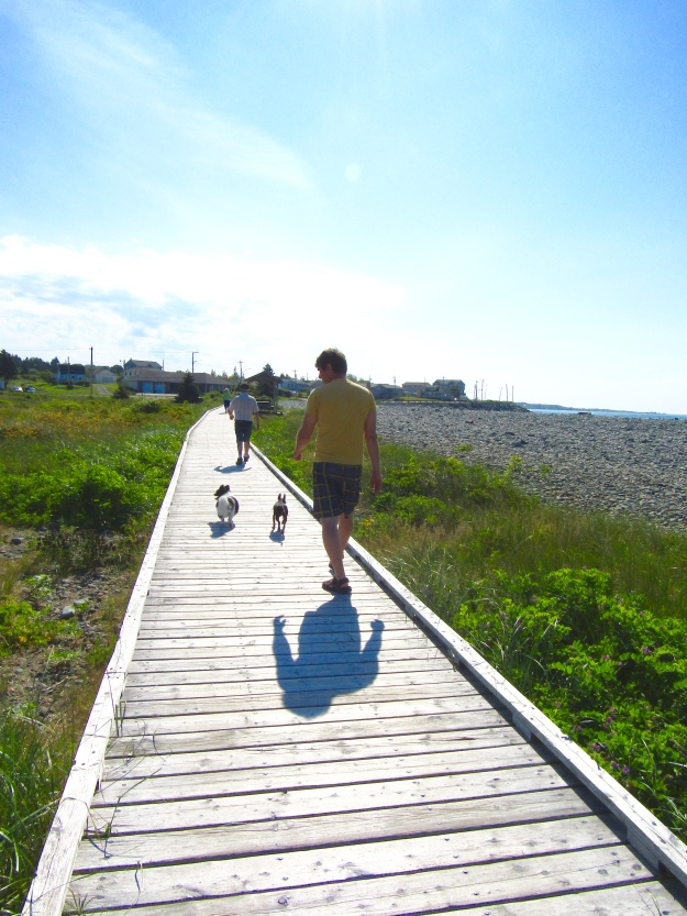 Early morning walk along the boardwalk, Eastern Passage.