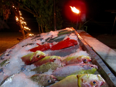 Each bar has a table of fresh fish caught daily to cook up for you!!