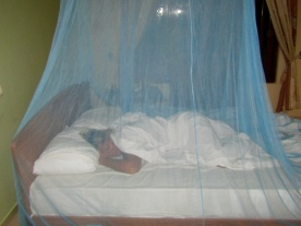 A necessary mosquito net!!