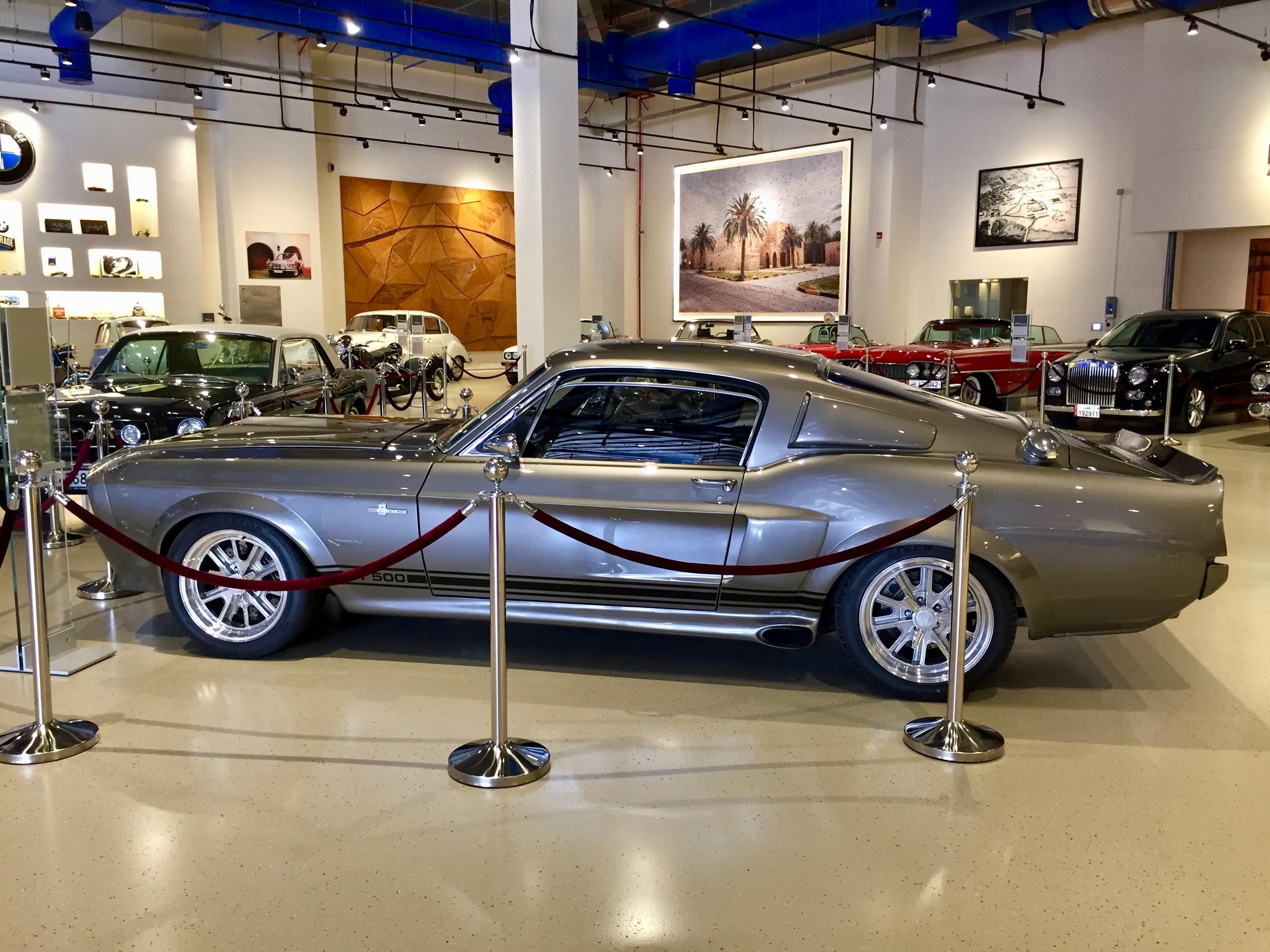 Al Khor, Qatar - Al-Fardan Private Luxury Car Collection - Ford Shelby Cobra GT500