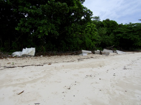 Possible remains from the tsunami