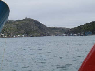 View of Signal Hill from the waterfront