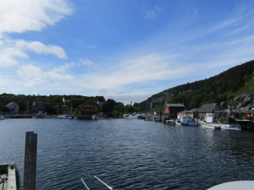 View of Quidi Vidi from the brewery