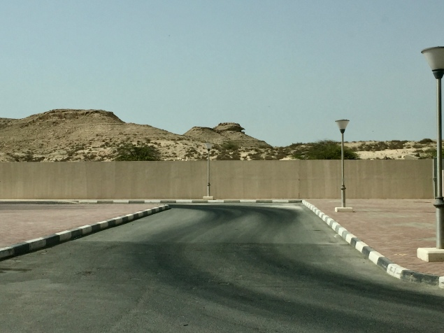 Cool land formations in this part of Qatar!