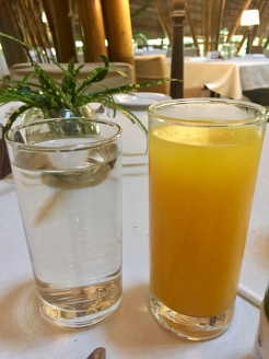 Thulasi Herbal Water and Ashgourd Juice with Turmeric