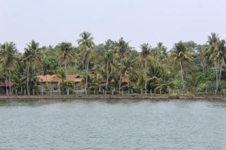 Nice home tucked away behind coconut trees