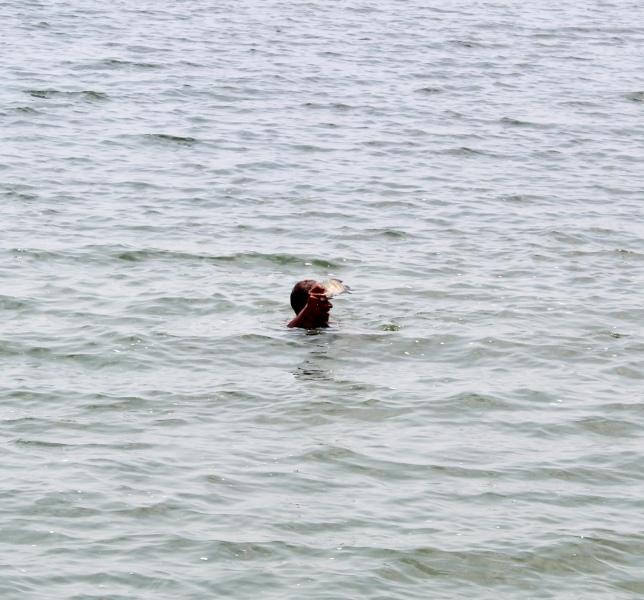 Kerala - Fishermen - Holding Fish Caught By Hand