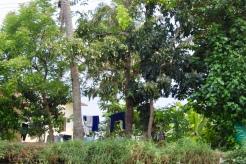 Kerala - Laundry drying