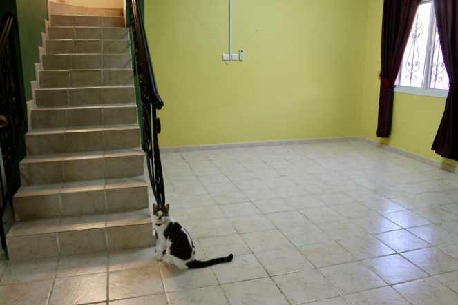 Empty Villa