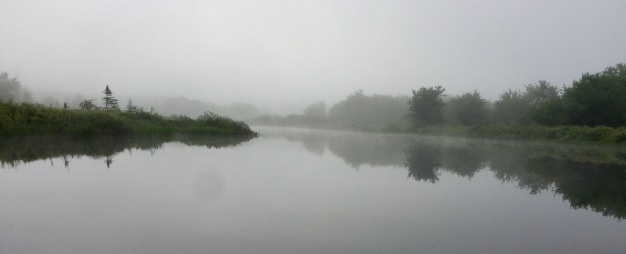 2019 - Lake kayaking in my Itiwit! Morning Fog...