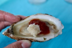 2019 - Christine's Visit - Hawk Hill Road - Lunenburg - Oysters! Horseradish and seafood sauce!
