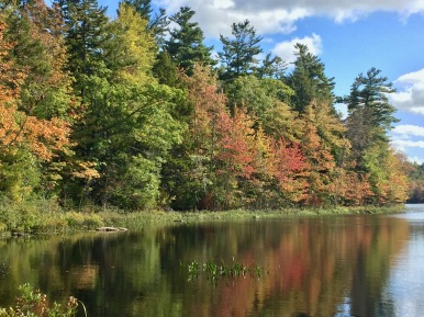 Murphy Lake - Upper Vaughn, Nova Scotia
