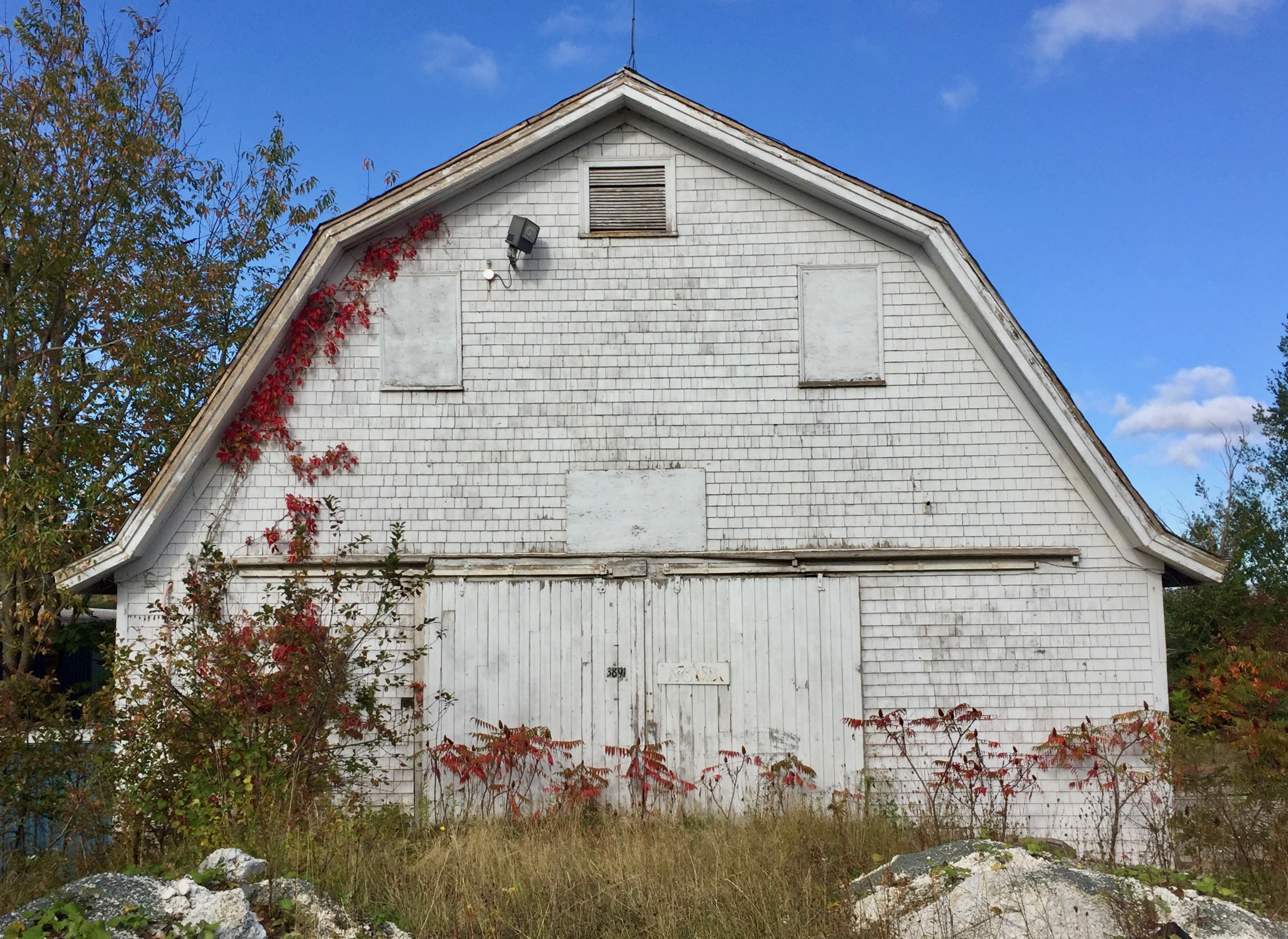 Mill Section, Nova Scotia - Old Barn