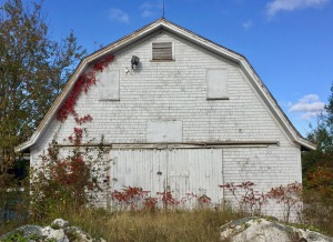 Mill Section, Nova Scotia - Old Barn