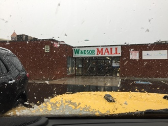 2019 - Windsor, Nova Scotia - Big snow flakes