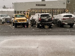 2019 - Windsor, Nova Scotia - Big snow flakes starting to pile up