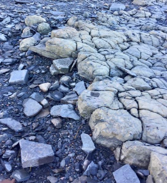 2019 - Blue Beach, Hantsport, Nova Scotia - From flat rocks to bobbled shaped rocks!