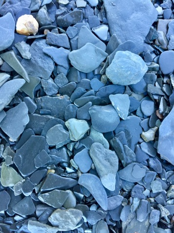 2019 - Blue Beach, Hantsport, Nova Scotia - Sand does not make this beach...these tiny flat rocks are what make the shores of Blue Beach