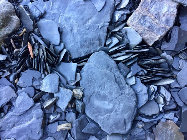 2019 - Blue Beach, Hantsport, Nova Scotia - Rocks of Blue Beach that stand like dragons scales when the tide goes out