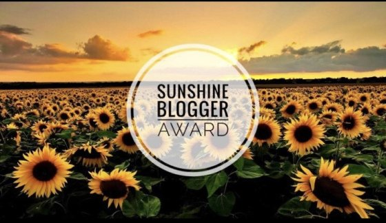 2019 - Blogger Sunshine Award