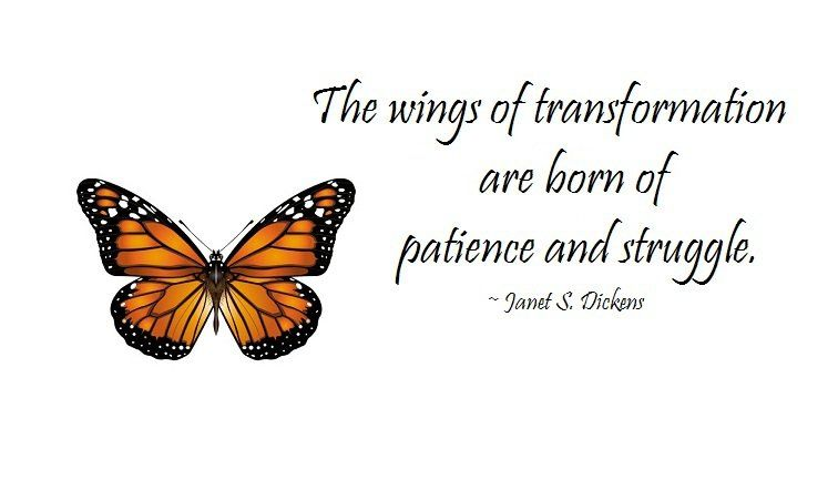 Transformation - Butterfly