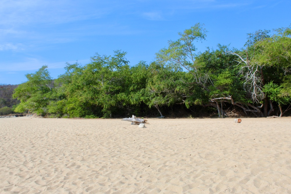 2019 - December - Tangolunda Beach, Huatulco, Mexico - Looking almost behind me, right