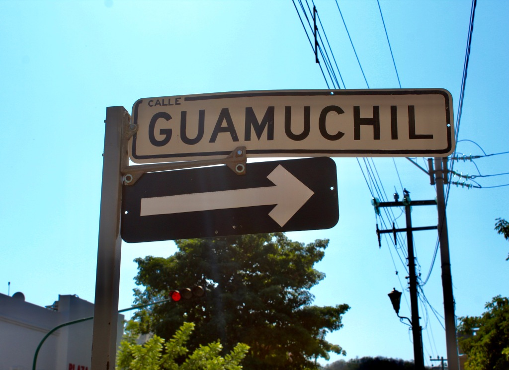 2019 - Huatulco, Mexico - New Year's Eve Day - Downtown La Crucecita - Street sign