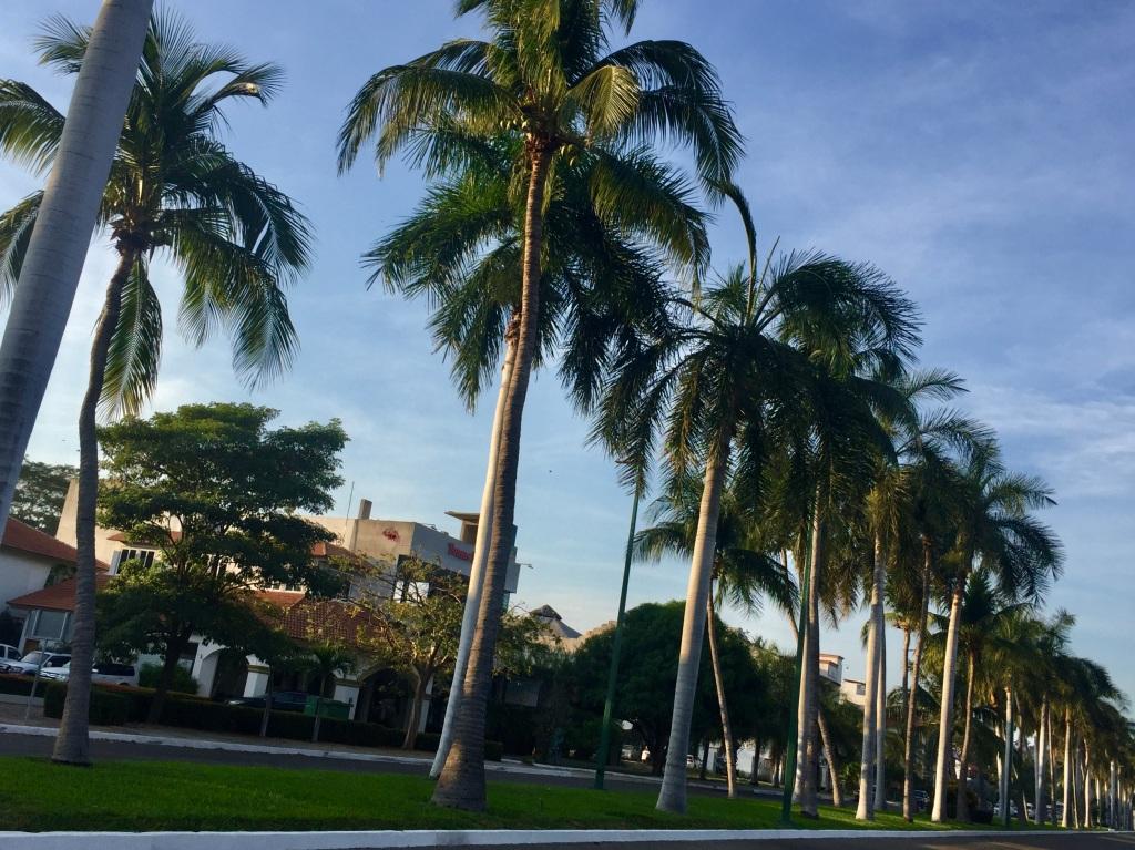 2020 - January 2nd - Huatulco, Mexico - La Crucecita - Morning run with Stephanie - Chahue Bay Strip