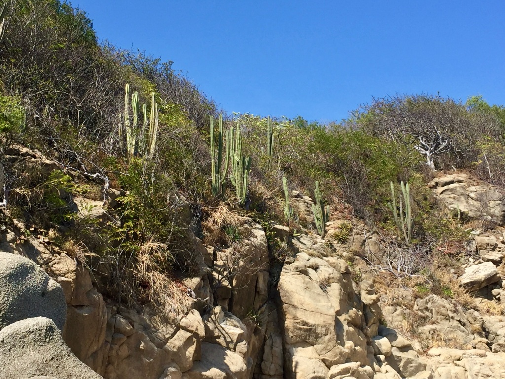 2020 - January 2nd - Huatulco, Mexico - Conejos Beach - Rock Formations