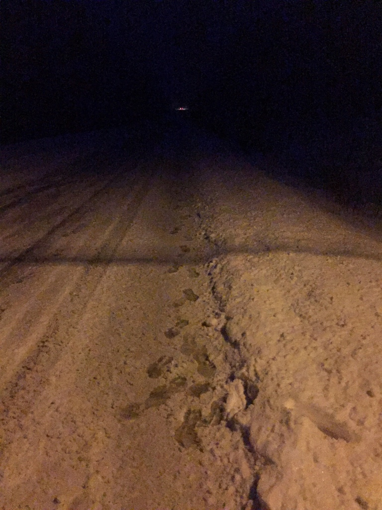 Wednesday - Snowstorm - Making tracks!!