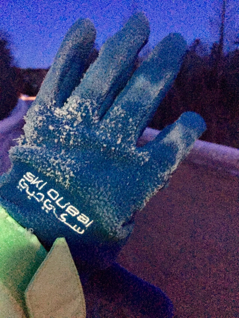 February - Friday - Frost on my gloves from my hands sweating inside of them!!