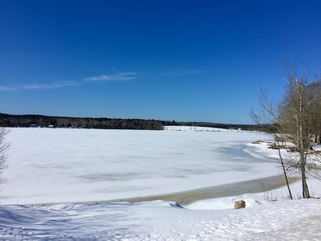 February - Sunday - Long Run - Mockingigh Lake