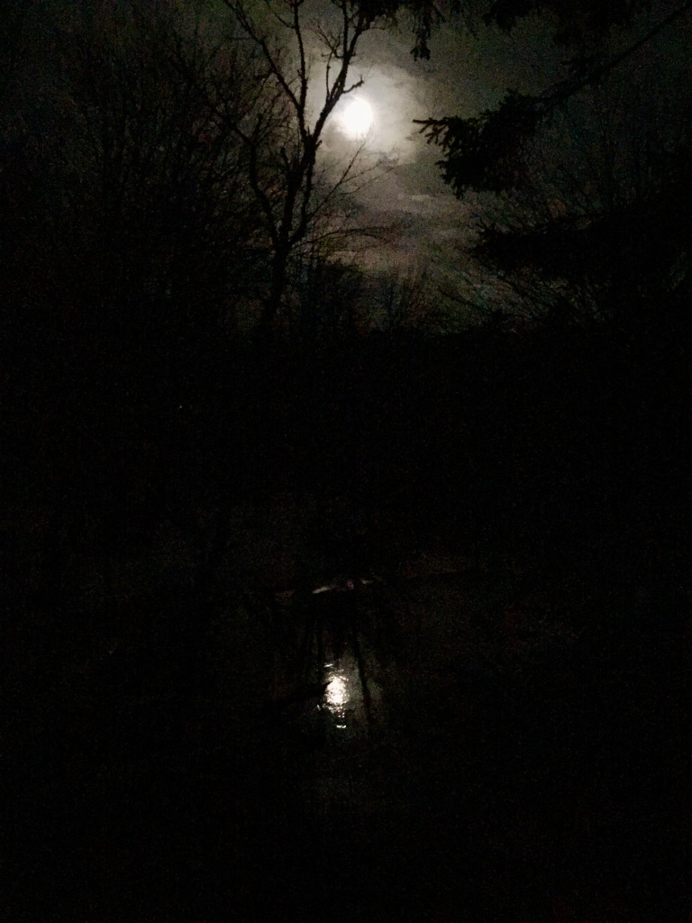 March - Plantar Fasciitis - Morning 6km only lasted to 1.5km - Beautiful full moon reflecting on a stream