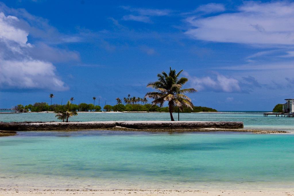 June - 2020 - Maldives - The beach