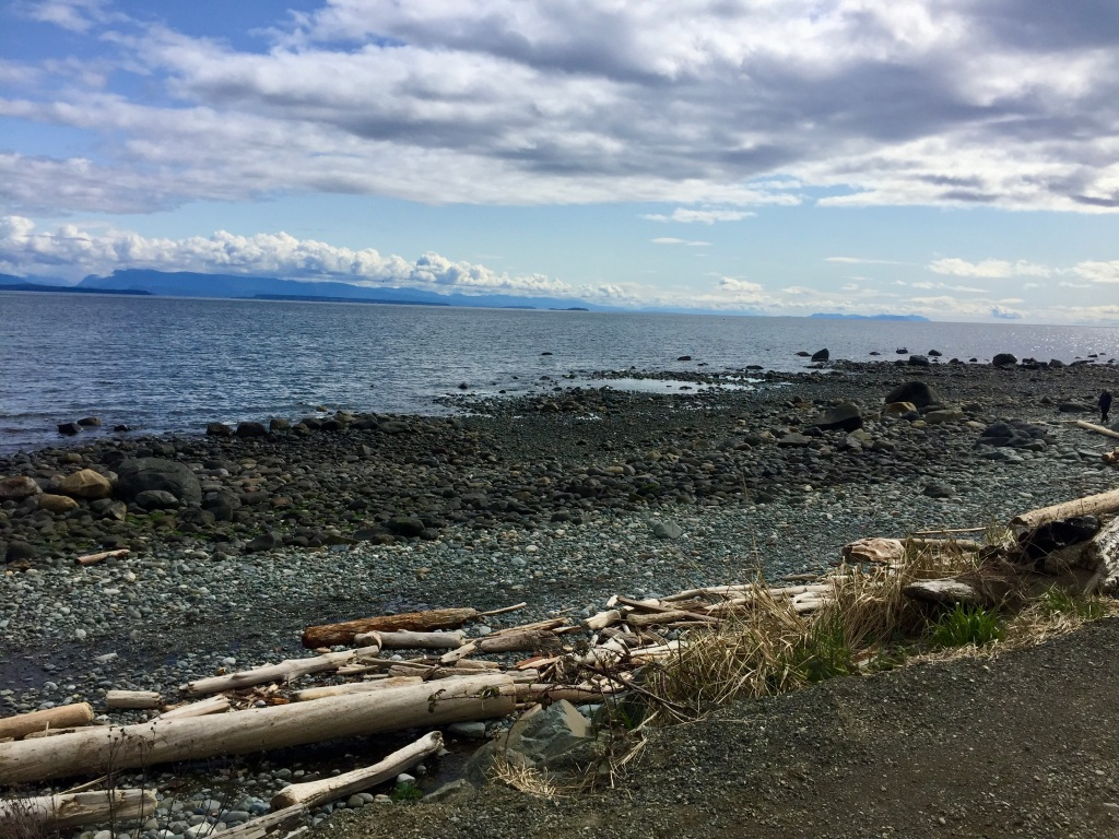March, 2020 - Vancouver Island, British Columbia - SeaWalk - Campbell River