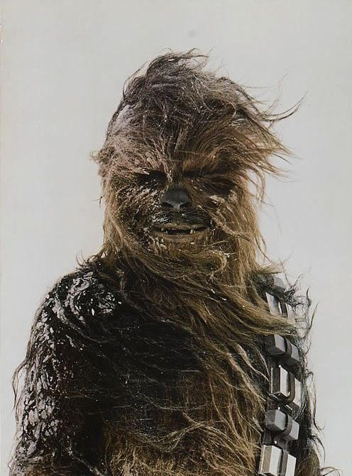 Chewbacca on the planet Hoth