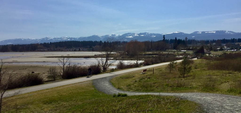 Spring, 2020 - Courtenay, Vancouver Island, British Columbia - The Courtenay Airpark - View of the Comox Coastal Mountains