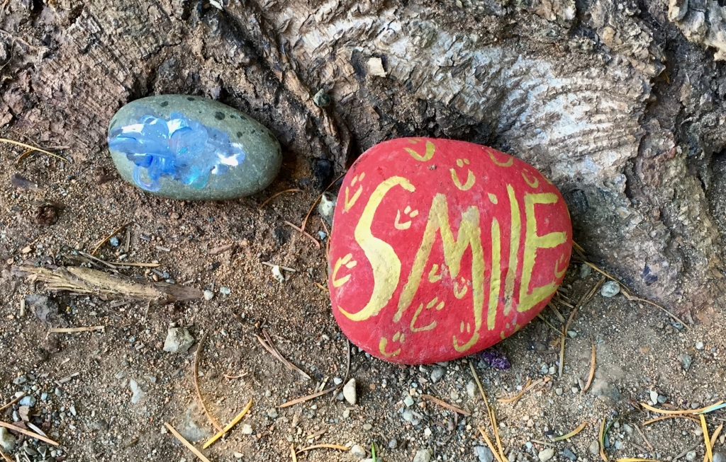 Spring/Summer 2020 - Campbell River, Vancouver Island, British Columbia - Painted Rocks