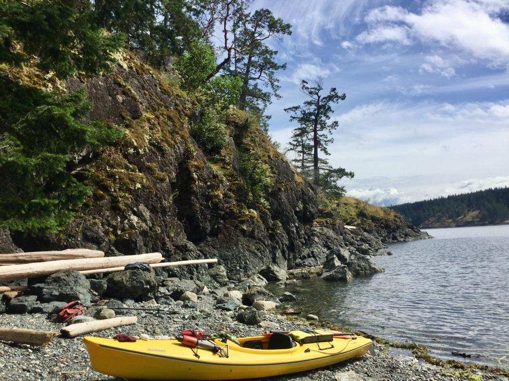 July 16th - Quadra Island, British Columbia - Kayaking - Hyacinthe Bay - The solitary tree!