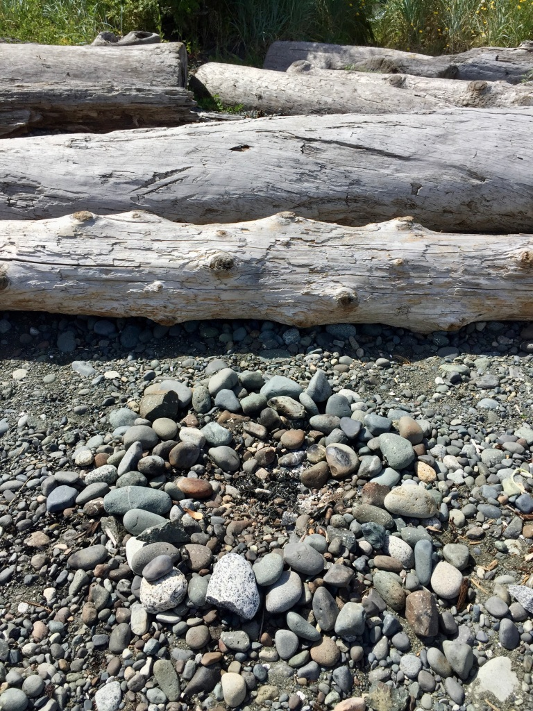 July, 2020 - Campbell River, Vancouver Island, British Columbia - Coastline beach