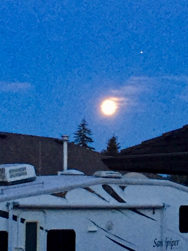 July, 2020 - Campbell River, Vancouver Island, British Columbia - Rising moon