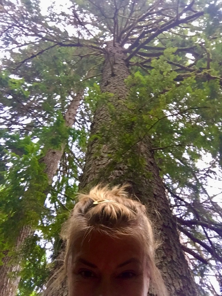 July, 2020 - Campbell River, Vancouver Island, British Columbia - Elk Falls Provincial Park - Selfie with aa tree!