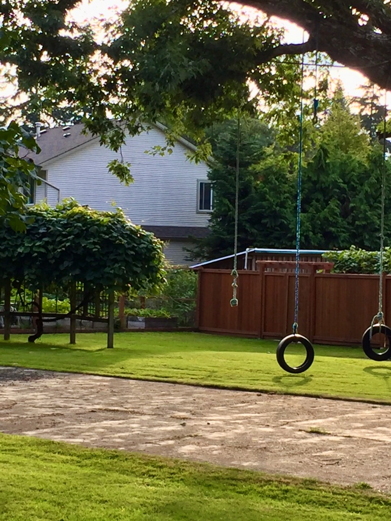 August/September, 2020 - Campbell River, Vancouver Island, British Columbia - Tire swings