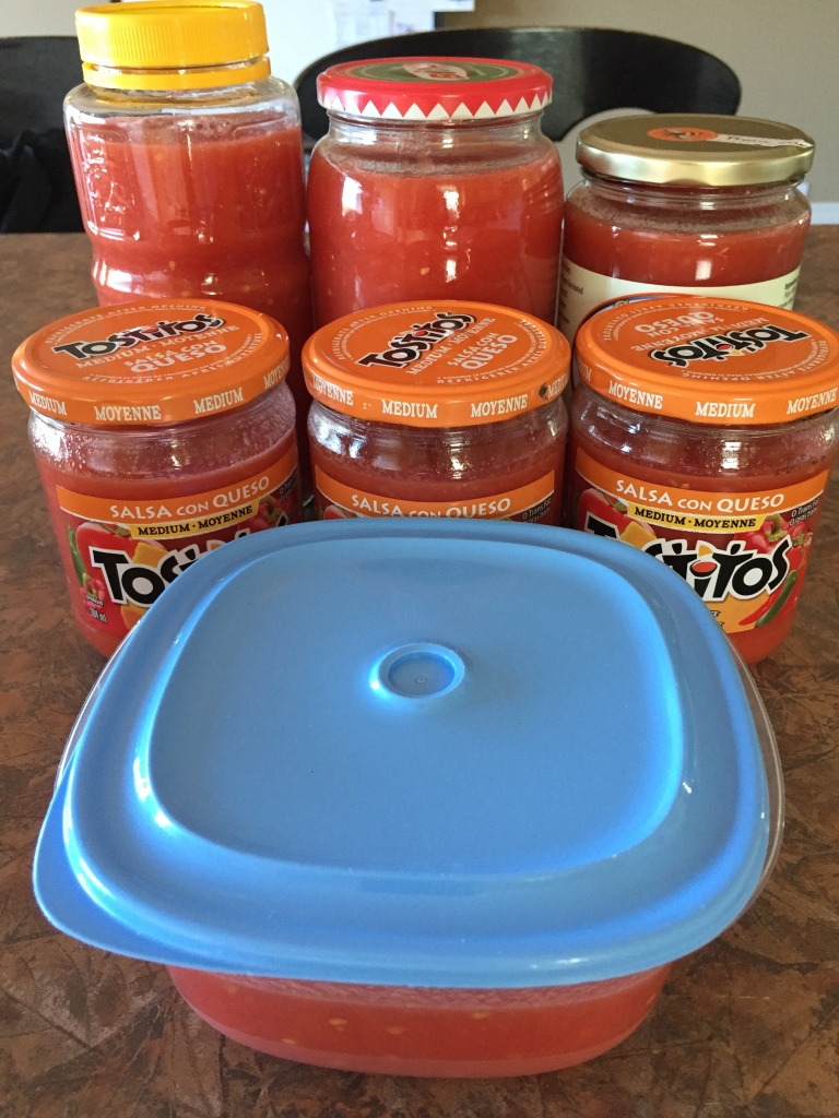 August, 2020 - Campbell River, Vancouver Island, British Columbia - Making tomato sauce - blanched tomatoes pureed into sauce!