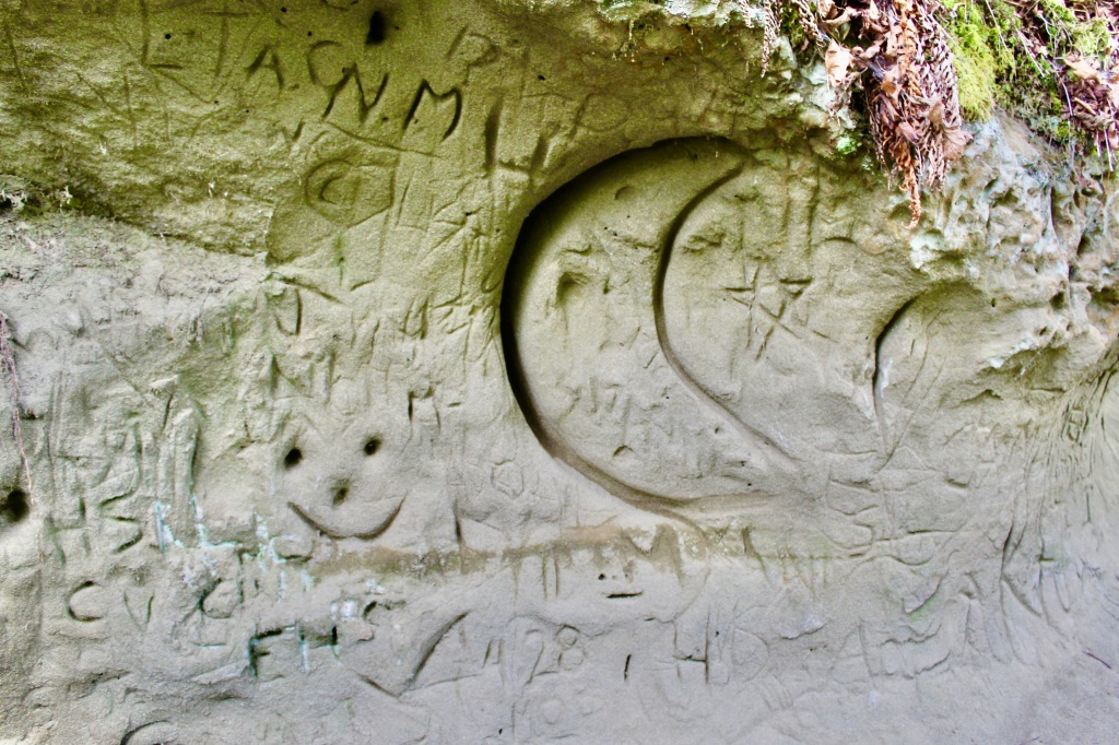 July, 2020 - Campbell River, Vancouver Island, British Columbia - Elk Falls Provincial Park - Carvings in the sand - eroded beneath the trees