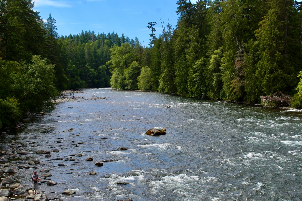 July, 2020 - Campbell River, Vancouver Island, British Columbia - Elk Falls Provincial Park - View from the Canyon View Trail Bridge