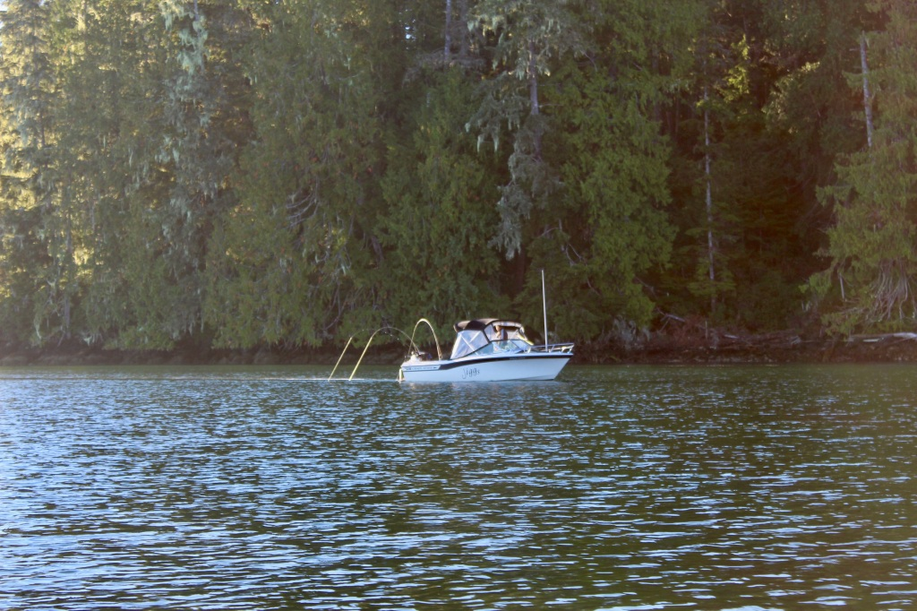 September, 2020 - Quatsino Sound, Vancouver Island, British Columbia - A boat trolling for salmon