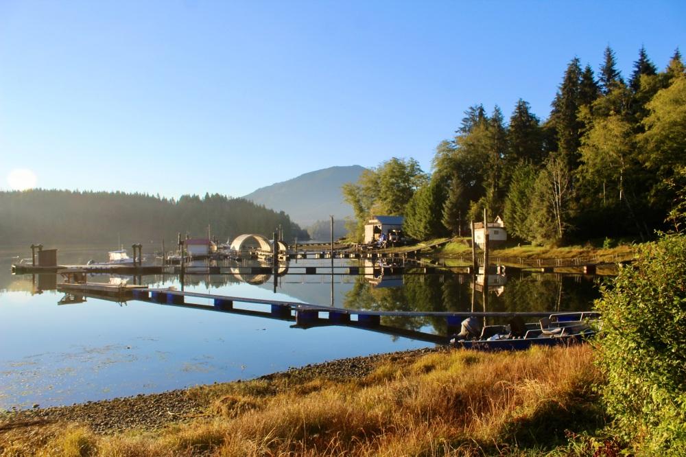 September, 2020 - Morning mist - Hecate Cove, Quatsino Sound, Vancouver Island, British Columbia, Canada